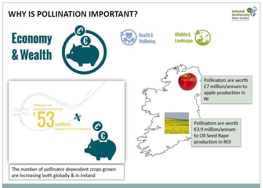 pollinators and the economy